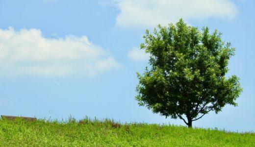 体力の低下を防いで、生命力を高めよう!